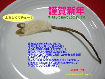 Dscn42030001