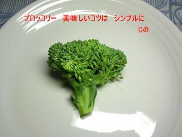 Dscn57980001_1