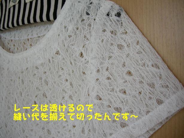 Dscn08290002